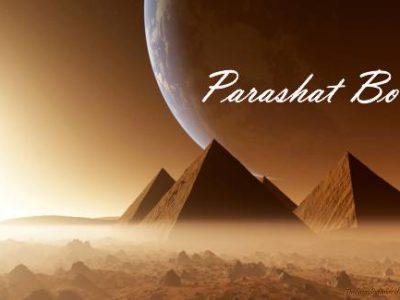 Parasha Bo