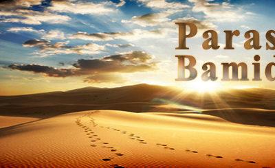 Parasha Bemidbar