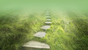 o caminho do sábio
